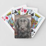 Foto negra del perro de perrito del labrador retri baraja de cartas