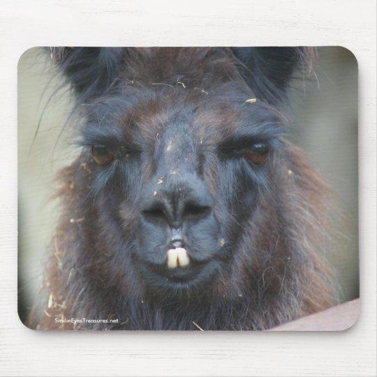 Foto negra Mousepad de la naturaleza animal de la