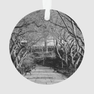 Foto negra y blanca del Central Park del paisaje