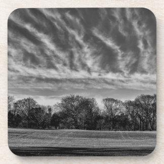 Foto negra y blanca del Central Park del paisaje Posavasos