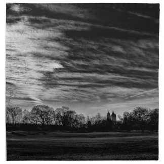 Foto negra y blanca del Central Park del paisaje Servilleta De Papel