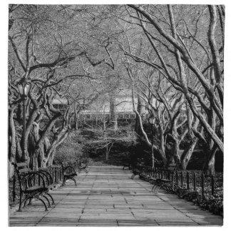 Foto negra y blanca del Central Park del paisaje Servilleta Imprimida