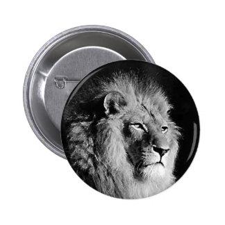 Foto negra y blanca del león pin redondo de 2 pulgadas