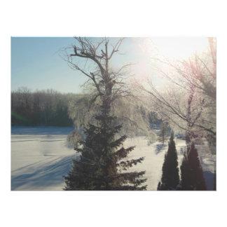 Foto nevada chispeante del lago trees de la salida fotografía