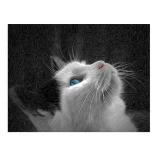 Foto observada azul del gato tarjeta postal