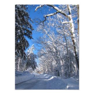 Foto pegajosa del de la nieve 35