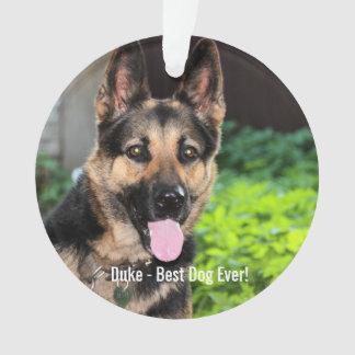 Foto personalizada del perro de pastor alemán,
