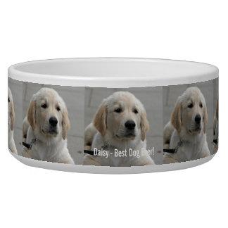 Foto personalizada y nombre del perro del golden tazones para perro