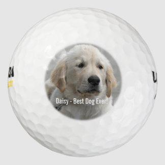 Foto personalizada y nombre del perro del golden pack de pelotas de golf