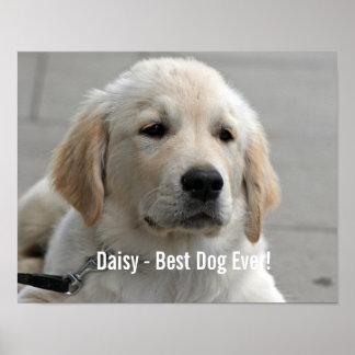 Foto personalizada y nombre del perro del golden póster