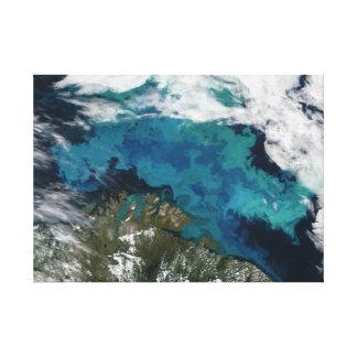 Foto por satélite de las aguas de la turquesa del  lona envuelta para galerías