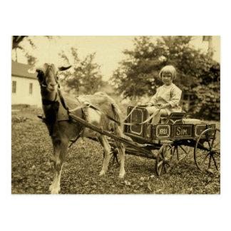 Foto postal del vintage del carro de la cabra -
