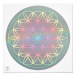 "Foto Poster ~ Healing~Energy ""Flower Of Life"" Cojinete"