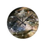 foto principal del cocodrilo reloj