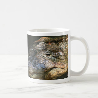 foto principal del cocodrilo taza