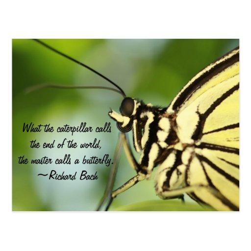 Foto principal y cita de la mariposa tarjeta postal