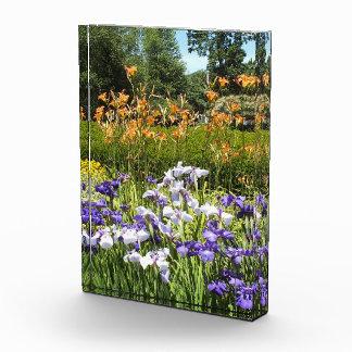 Foto púrpura del acrílico del jardín del iris