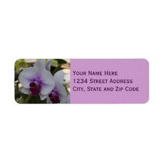 Foto púrpura y blanca elegante de la orquídea etiquetas de remite
