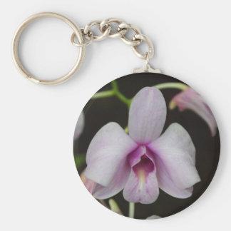 Foto purpúrea clara de la orquídea llavero