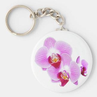 Foto radiante del primer de la orquídea - aislada  llaveros personalizados