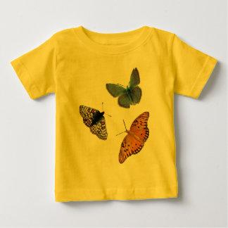 Foto rara de cuatro mariposas playeras