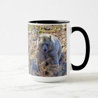 Foto rara de la fauna del oso de Kermode (oso del Taza
