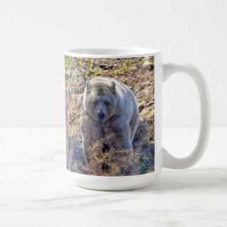 Foto rara de la fauna del oso de Kermode (oso del Taza De Café