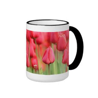 Foto roja de los tulipanes taza a dos colores