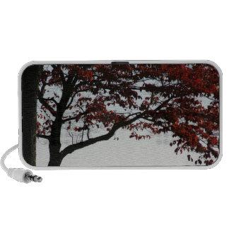 Foto roja de ruborización del árbol del otoño sistema de altavoz
