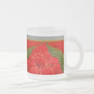 Foto roja del campo de los tulipanes taza cristal mate