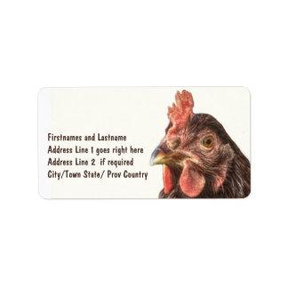 Foto roja del pollo de la ponedora etiqueta de dirección