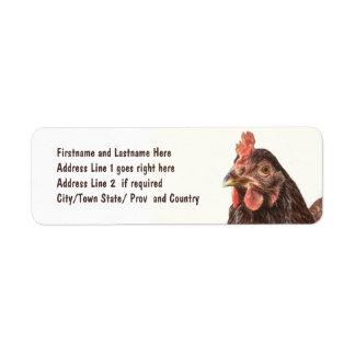 Foto roja del pollo de la ponedora etiqueta de remite