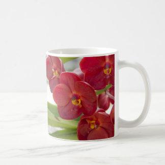 Foto roja elegante de las orquídeas taza básica blanca
