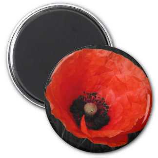 Foto roja Foto de la amapola de Mohnblume Imán Redondo 5 Cm