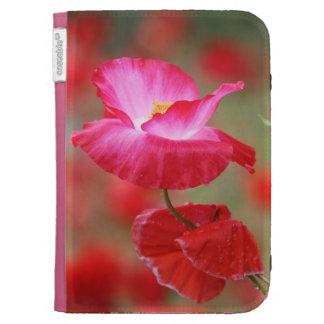 Foto roja y rosada de las amapolas