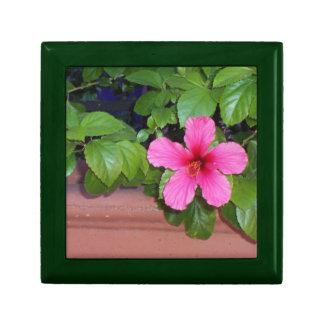 Foto rosada de la flor cajas de recuerdo