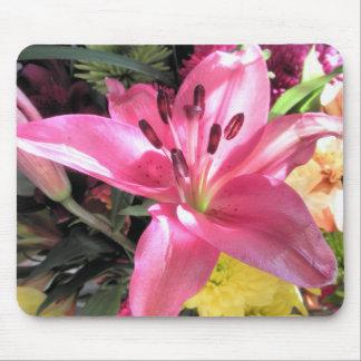Foto rosada de las flores de los lirios de la flor alfombrilla de raton