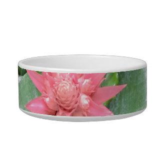 Foto rosada del cuenco del mascota de la flor de L Comedero Para Mascota