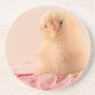 Foto rosada del polluelo del bebé del volante posavasos de arenisca