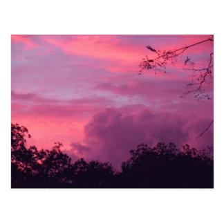Foto rosada y púrpura de los cielos del cielo de postales