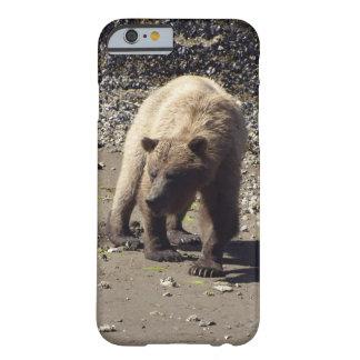Foto salvaje de la fauna del oso grizzly que funda barely there iPhone 6