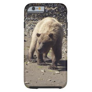 Foto salvaje de la fauna del oso grizzly que funda resistente iPhone 6