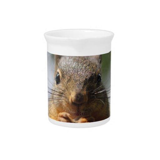 Foto sonriente de la ardilla linda jarra para bebida