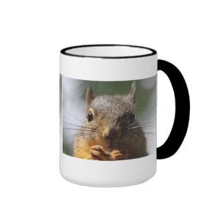 Foto sonriente de la ardilla linda taza de dos colores