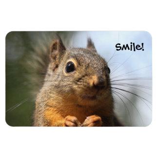 Foto sonriente del primer de la ardilla linda imán