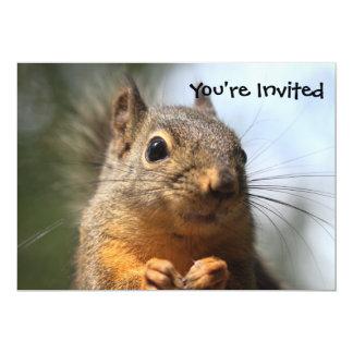 Foto sonriente del primer de la ardilla linda invitaciones personales