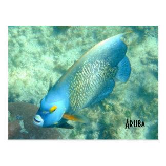Foto subacuática de Aruba de pescados Postales