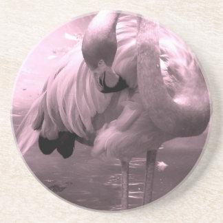 ¡Foto teñida rosada, flamenco rosado del flamenco! Posavaso Para Bebida