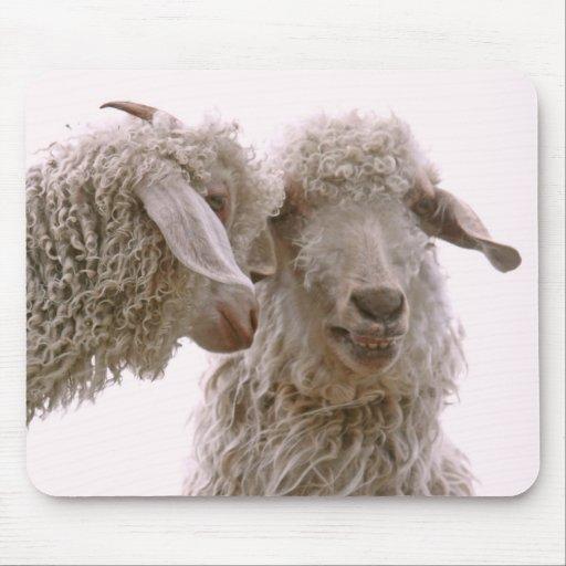 Foto tonta de las cabras alfombrillas de ratón
