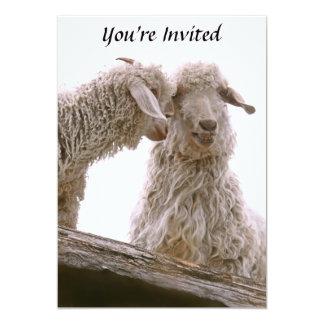 """Foto tonta de las cabras invitación 5"""" x 7"""""""